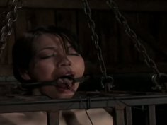 Crazy BDSM session of wicked Asian sweetie in the slave cage