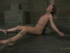 Crucified near the wooden bar chick Hailey Young has to suck a cock