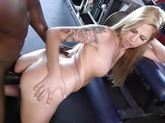 Ryan Riesling HD Sex Movies